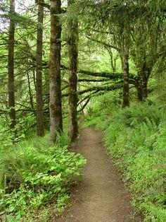 Mt. Pisgah hiking trail just east of Eugene