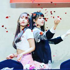 SINRIN Kpop Girl Groups, Korean Girl Groups, Kpop Girls, Sinb Gfriend, Pics For Dp, Cloud Dancer, Ballet, Fans Cafe, G Friend
