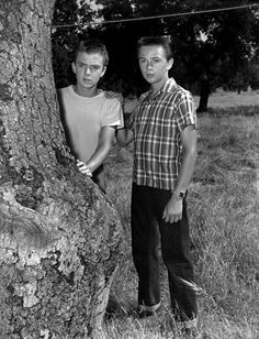If you were born in 1956, that year two of the big teen stars on TV were Tim Considine and Tommy Kirk -- they stared together on The Mickey Mouse Club as The Hardy Boys in the serial The Mystery of the Applegate Treasure