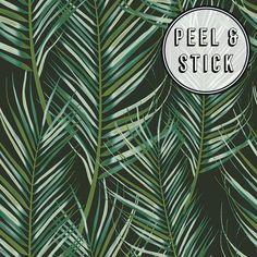 Transform Transform Palm Green/Black Vinyl Peelable Roll (Covers 30.75 sq. ft.)-108333 - The Home Depot Palm Wallpaper, Vinyl Wallpaper, Wallpaper Roll, Peel And Stick Wallpaper, Green Wallpaper, Bathroom Wallpaper, Palm Tree Leaves, Plant Leaves, White Backdrop