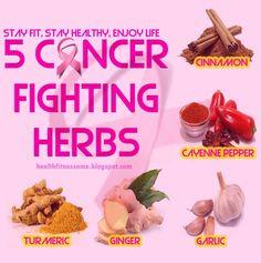 5 Cancer Fighting Herbs... cinnamon, turmeric, ginger, garlic, cancer...
