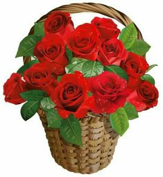 Rose Day Gifts - Same day delivery, Express delivery & midnight delivery available for all rose day gifts. Red rose bunch, bouquet, Roses with teddy in designer gift box. Beautiful Flowers Wallpapers, Beautiful Roses, Pretty Flowers, Cut Flowers, Rose Basket, Flower Basket, Hearts And Roses, Red Roses, Art Floral