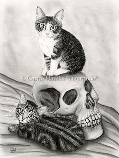Witchs Kittens ` Cat Skull Gothic Goth, Prints & Gift Items featuring this image are available on my website. © Carrie Hawks, Tigerpixie Art Studio, Fantasy Cat Art http://Tigerpixie.com