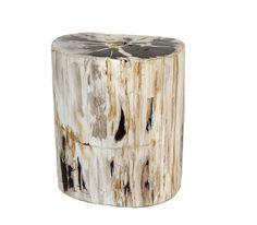 EMILIO ROBBA | COLLECTION | Furniture | Stools | Petrified Wood Cylinder (Large)