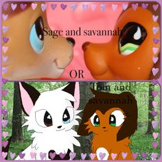 I love savvy and tom but others also like sage and savvy so dont judge them for who they think is a greater cuple