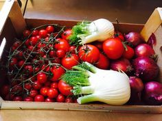 Wine Bar, Vegetables, Rook, Vegetable Recipes, Veggies