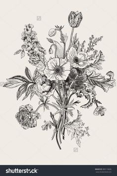 Victorian Bouquet. Spring Flowers. Poppy, Anemones, Tulips, Delphinium. Vintage Botanical Illustration. Vector Design Element. Black And…