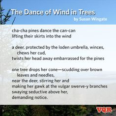 """The Dance of Wind in Trees"" by Susan Wingate #poem #poetry #instapoem"