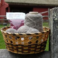 Products from our very own Heckscher Farm; shop local! Wool Dryer Balls, Make-your-own necklace, Craft Wool,Yarn Skeins Eggs, & Maple syrup (seasonal). Find these products in the Overbrook Nature Center.