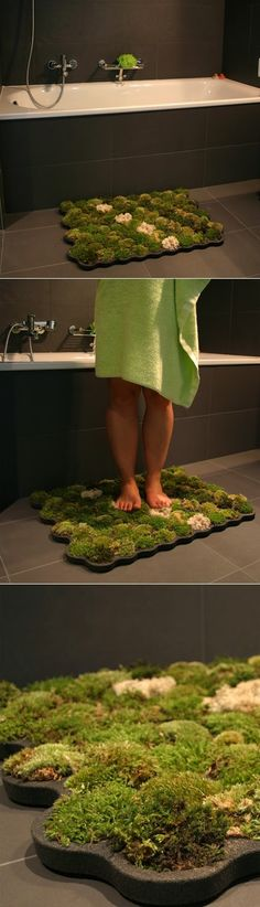 Moss Bathroom Mats : They don't need dirt, just water and if they dry, they can live again just by being watered again. Each piece of moss is in a different cell so if one needs to be replaced, it can be done easily. And the humidity of the bathroom ensures that the mosses thrive.