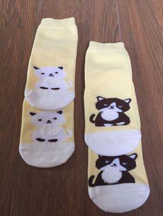 Baby Socks Cat Funny