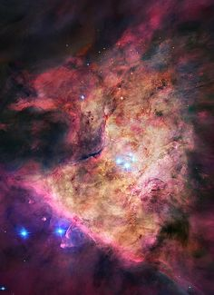 """Trapezium Cluster"" the centre of the Orion Nebula"