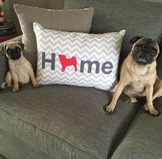Pug Home pillow. Offered in multiple colors and 50+ dog breeds. Cover is machine washable and Made in USA.