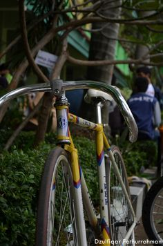 TREK INA bicycle