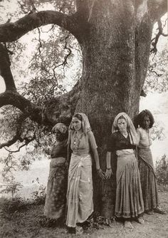 A picture of the Chipko movement in the early 70's in the Garhwal Hills of India. The village woman were stopping trees from being cut down