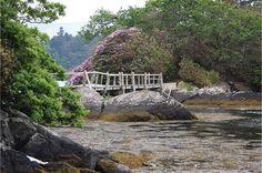 Derreen Gardens, Kenmare ireland - Google Search