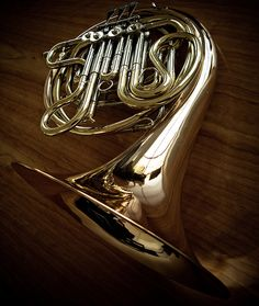 French Horn, via Flickr.