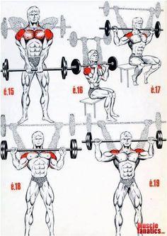 Shoulders.