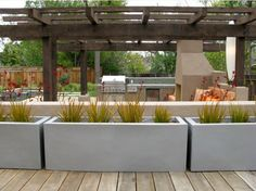 concrete flower pots!!!