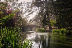 8 choses à faire à San Francisco, Golden Gate Park » Claire Elise Hatterer