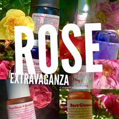 ROSE EXTRAVAGANZA: Luxuriate Like The Goddess You Are (15% Off Rose Revelry) #FlyHighRootDeep #summer #rose #roses #greenbeauty #cleanbeauty #naturalbeauty #vegan #organic #wildcrafted #eco #sustainable #madeincanada #livinglibations #glow #skincare #highvibe #meditation #yoga #garden #rosegarden #gardening #thrive