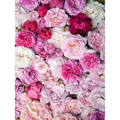 Allenjoy photography backdrop floral Flower pink White Valentine
