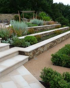 landscaping a sloped site #gardendesign #gardensteps Garden Retaining Walls, Retaining Wall Steps, Retaining Wall Design, Landscaping Retaining Walls, Garden Stairs, Garden Walls, Retaining Blocks, Garden Beds, Gabion Wall