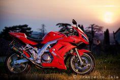 Suzuki sv 650 s Suzuki Motorcycle, Yamaha Motorcycles, Cars And Motorcycles, Suzuki Sv 650 S, Custom Sport Bikes, Cafe Racer, Super Bikes, Motorbikes, Concept Art