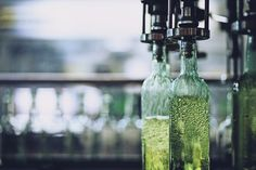 España supera los 1.000 millones de euros en exportación de vinos con DOP hasta octubre