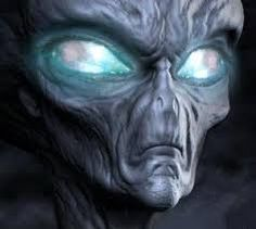 A discussion of the future of human evolution and how it relates to Terrestrial Extras (more commonly known as Aliens). Are we really aliens on our own plane. Aliens Und Ufos, Ancient Aliens, Alien Theories, Conspiracy Theories, Bigfoot Sightings, Alien Encounters, Grey Alien, Alien Art, Stars