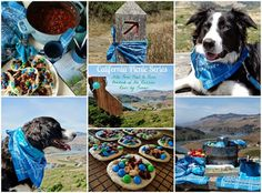 ...a quiet life...: California Picnic Series, hiking Pomo Trail