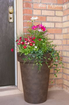 Idea Of Making Plant Pots At Home // Flower Pots From Cement Marbles // Home Decoration Ideas – Top Soop Container Plants, Container Gardening, Gardening Tips, Succulent Containers, Container Flowers, Organic Gardening, Porch Plants, Potted Plants, Pots For Plants