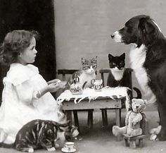 The tea party | vintage | adorable | children playing | dog | cats | well behaved | companion | friendship | only child | companionship | www.republicofyou.com.au