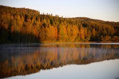 Landscape Photos, Natural Beauty, Mountains, Nature, Pictures, Travel, Life, Autumn, Photos