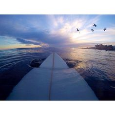 surf pictures and sunsets