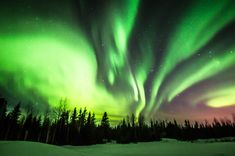 The Fort McMurray Northern Lights Viewing Experience - Hike Bike Travel Northern Lights Canada, Northern Lights Viewing, See The Northern Lights, Canada Travel, Canada Trip, Fort Mcmurray, Visit Canada, City Photo, Tourism