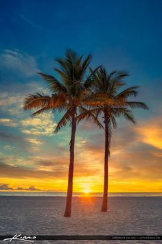 Sun rising between two coconut palm trees at the beach on Singer Island in Riviera Beach, Florida. HDR image created in Photomatix Pro and processed using Topaz software.