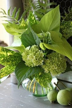 Green flowers (hydrangea), ferns, and perfectly over-sized leaves combine in this boldly energetic bouquet. Deco Floral, Arte Floral, Floral Design, Ikebana, Green Flowers, Beautiful Flowers, Green Rose, Green Plants, Beautiful Boys