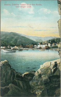 Picture postcard of Avalon, Catalina Island.