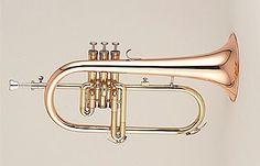 FLISCORNO El fliscorno es un instrumento de viento, perteneciente a la familia de los instrumentos de viento metal o metales dentro del tipo de los bugles (también llamados figles, bügelhorn, flügelhorn o saxhornos), fabricado en aleación de metal. Guarda gran similitud con la trompeta. El sonido se produce gracias a la vibración de los labios del intérprete en la parte denominada boquilla a partir de la columna del aire (flujo del aire). El fliscorno comúnmente, está afinado en Si♭ (bemol)…
