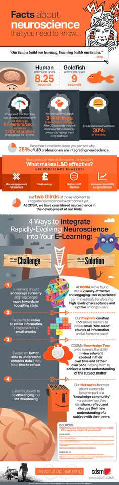 How to Integrate Neuroscience into Your eLearning Infographic - e-Learning Infographics Science Tools, Brain Science, Science Facts, Science Education, Physical Education, Music Education, Health Education, E Learning, Brain Based Learning