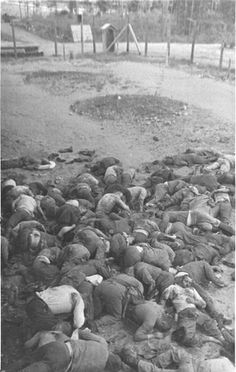 Ponary, Lithuania - Corpses of Russian POW's. 7,500 Soviet POW's were shot in 1941 soon after Operation Barbarossa began by Nazi SS Einsatzgruppe and Lithuanian Nazi collaborators.