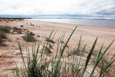 Yyteri on Porin ehdottomia matkakohteita. Western Coast, Nordic Design, Summer Garden, Beach Themes, Coastal, Surfing, Europe, Ocean, Paint