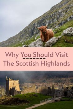 5 reasons to fall in love with the Scottish Highlands - from Loch Ness and Culloden Moor all the way down to stunning Stirling! #scotlandtravel #scottishhighlands Scotland Travel Guide, Slovenia Travel, Edinburgh Castle, European Vacation, England And Scotland, Scottish Highlands, Best Places To Travel, London Travel, Great Britain