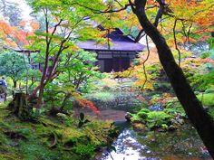 7日の京都散策(南禅寺) - ただのブタじゃないもん。3
