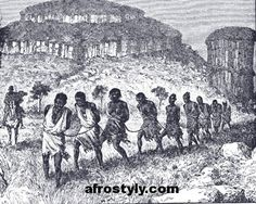 Africans were captured from their tribes by people (usually part of another tribe) who crept up & either threw a net or clubbed them until they were unconscious then transported the to a fort where they were held ready to be take onto boats by the traders. The slaves were mainly bought by British boats from the African traders and were taken to many countries including parts of South America, and some parts of Asia, but mainly to the United States.