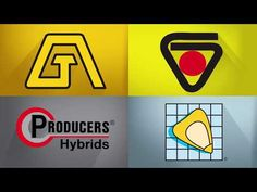How LG Seeds built hype when merging five legacy seed brands into one, refreshed company. Video Production, Seeds, Product Launch, Brand New, Youtube, Grains, Youtubers, Youtube Movies