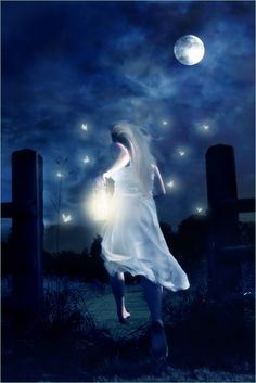 """The lights called to her, """"Follow us...we can lead you to your dreams..."""""""