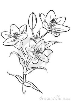 Raster version of vector. Flower Wall Design, Flower Designs, Thin Line Tattoos, Small Tattoos, Lilies Drawing, Beautiful Flower Drawings, D Tattoo, Drawing Projects, Applique Designs