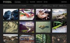 Passel es una página donde podemos encontrar alrededor de 20000 imágenes gratuitas para descargar y usar en nuestro proyectos.